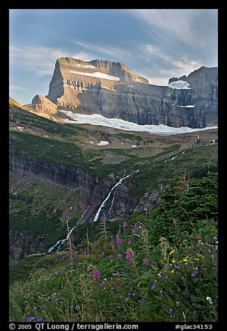 Wildflowers, Grinnell Falls, Mt Gould, and Garden Wall, sunset. Glacier National Park (color)