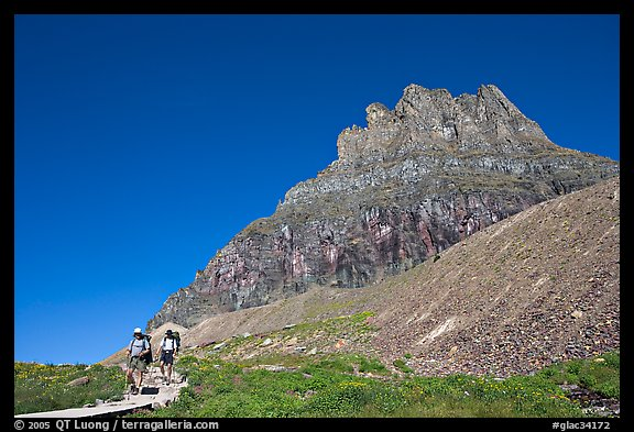 Two backpackers descending on trail near Logan Pass. Glacier National Park (color)
