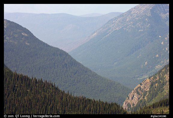 Forested Ridges seen from Hidden Lake Pass. Glacier National Park (color)