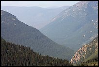 Forested Ridges seen from Hidden Lake Pass. Glacier National Park, Montana, USA.