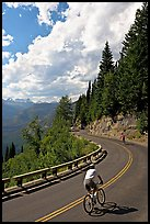 Bicyclists riding down Going-to-the-Sun road. Glacier National Park, Montana, USA. (color)