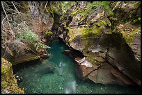 Emerald waters, Avalanche Creek. Glacier National Park ( color)