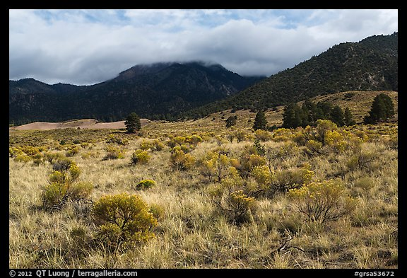 Grasslands below mountains. Great Sand Dunes National Park and Preserve (color)