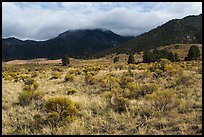 Grasslands below mountains. Great Sand Dunes National Park, Colorado, USA. (color)