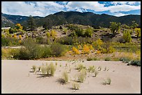 Dune sand, creek, grasslands, and mountains in autumn. Great Sand Dunes National Park, Colorado, USA. (color)