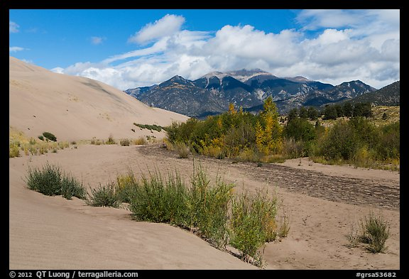 Dry Medano Creek. Great Sand Dunes National Park and Preserve (color)