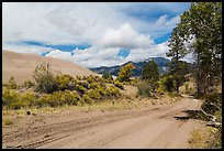 Medano Pass primitive road. Great Sand Dunes National Park, Colorado, USA. (color)