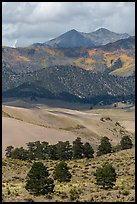 Sangre de Cristo mountains with aspen in fall foliage above dunes. Great Sand Dunes National Park, Colorado, USA. (color)