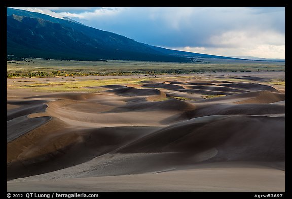 Dune field and valley, late afternoon. Great Sand Dunes National Park and Preserve (color)