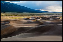 Dune field and valley, late afternoon. Great Sand Dunes National Park, Colorado, USA. (color)