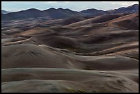 Dune ridges at dusk. Great Sand Dunes National Park, Colorado, USA. (color)