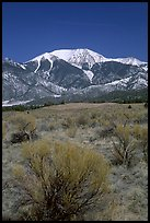 Desert-like sagebrush and snowy Sangre de Cristo Mountains. Great Sand Dunes National Park and Preserve ( color)
