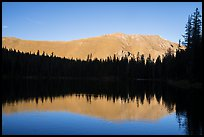 Mountain reflection and line of trees, Sand Creek Lake. Great Sand Dunes National Park and Preserve ( color)