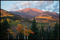 Mount Herard and autumn foliage at sunrise from Medano Pass. Great Sand Dunes National Park and Preserve ( color)