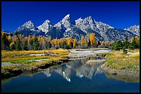 Grand Teton and fall colors reflected at Schwabacher landing. Grand Teton National Park, Wyoming, USA. (color)