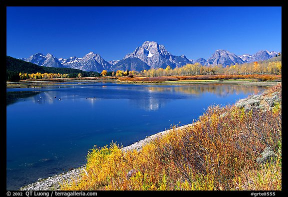 Fall colors and reflexions of Mt Moran and Teton range in Oxbow bend. Grand Teton National Park, Wyoming, USA.