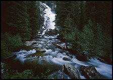 Hidden Falls, stream, and forest. Grand Teton National Park, Wyoming, USA.