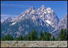 Cathedral group, morning. Grand Teton National Park ( color)