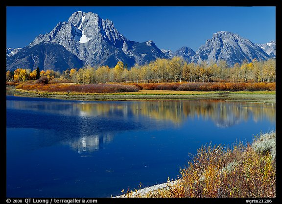 Mt Moran reflected in Oxbow bend in autumn. Grand Teton National Park (color)