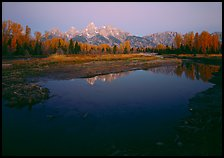Teton range reflected in water at Schwabacher Landing, sunrise. Grand Teton National Park, Wyoming, USA.