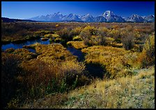 Wetlands and Teton range in autumn. Grand Teton National Park, Wyoming, USA.