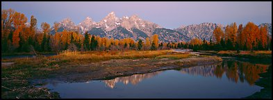 Jagged mountains and autumn colors reflected at sunrise. Grand Teton National Park (Panoramic color)