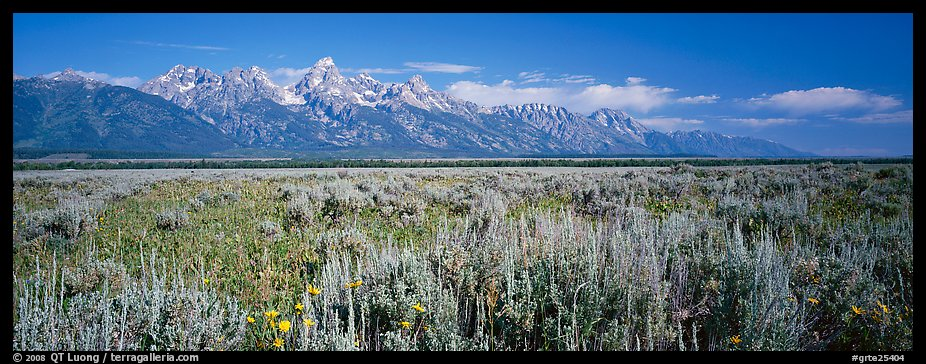 Sagebrush-covered flat and mountain range. Grand Teton National Park (color)
