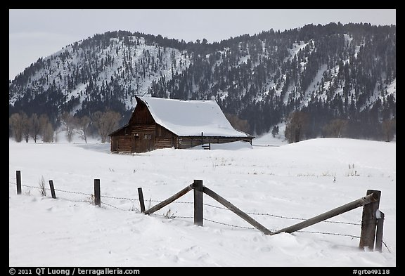 Fence and historic Moulton Barn in winter. Grand Teton National Park (color)