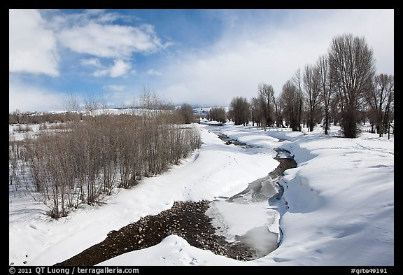 Snowscape with stream. Grand Teton National Park (color)
