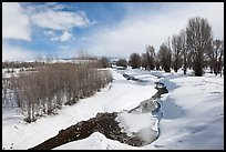 Snowscape with stream. Grand Teton National Park, Wyoming, USA.