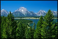 Teton range and Jackson Lake seen from Signal Mountain. Grand Teton National Park, Wyoming, USA. (color)