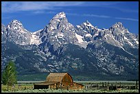 Moulton Barn and Grand Tetons, morning. Grand Teton National Park, Wyoming, USA.