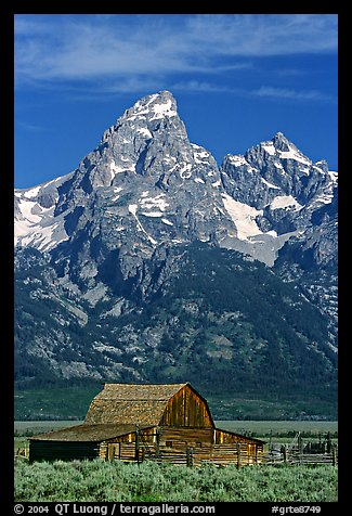Historic Moulton Barn and Grand Tetons, morning. Grand Teton National Park (color)