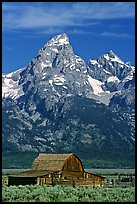 Historic Moulton Barn and Grand Tetons, morning. Grand Teton National Park, Wyoming, USA.