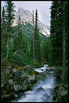 Cascade Creek and Tetons. Grand Teton National Park, Wyoming, USA.