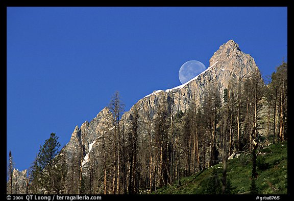 Moon and Grand Teton. Grand Teton National Park (color)