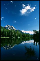 Mt Moran reflected in Leigh Lake, morning. Grand Teton National Park, Wyoming, USA. (color)