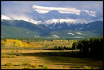 Fall color and mountain range. Colorado, USA