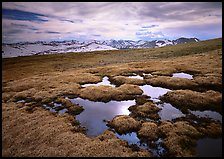 Alpine tundra and the Never Summer range in autumn. Rocky Mountain National Park, Colorado, USA.