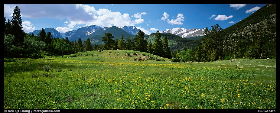 Summer mountain landscape. rocky mountain national park, colorado, usa