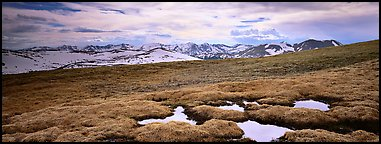 Alpine meadow in autumn. Rocky Mountain National Park (Panoramic color)