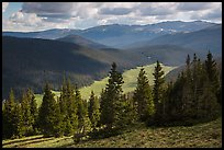 Cache la Poudre River Valley. Rocky Mountain National Park ( color)