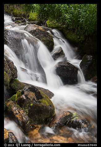 Stream cascading over rocks. Rocky Mountain National Park (color)