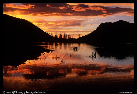 Sunrise on a pond in Horseshoe Park. Rocky Mountain National Park, Colorado, USA.
