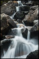 Calypso Cascades detail. Rocky Mountain National Park ( color)