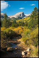 Creek and Hallet Peak in autumn. Rocky Mountain National Park ( color)