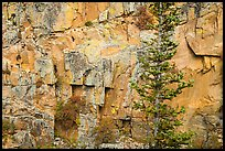 Walls of gorge. Rocky Mountain National Park ( color)
