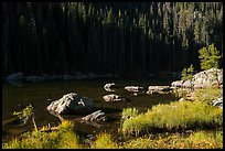 Grasses, boulders, lakeshore, Dream Lake. Rocky Mountain National Park ( color)