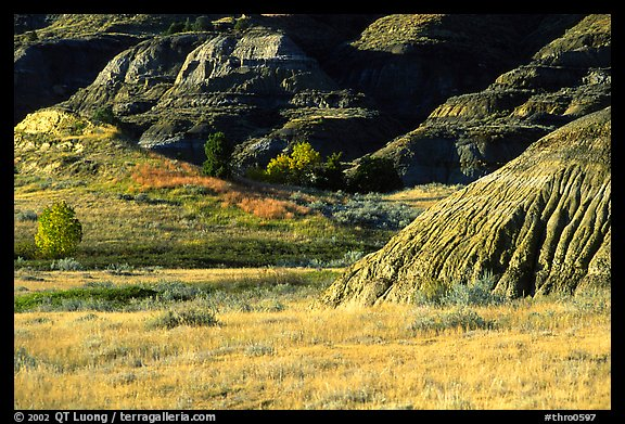 Badlands and prairie in North unit. Theodore Roosevelt National Park (color)