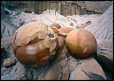 Cannon ball concretions and badlands. Theodore Roosevelt  National Park ( color)